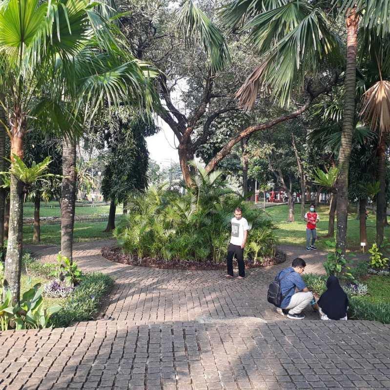 foto Taman Cattleya jakarta