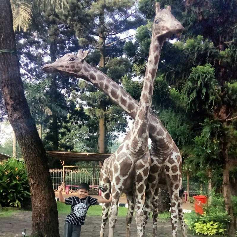 kebun binatang ragunan jakarta selatan