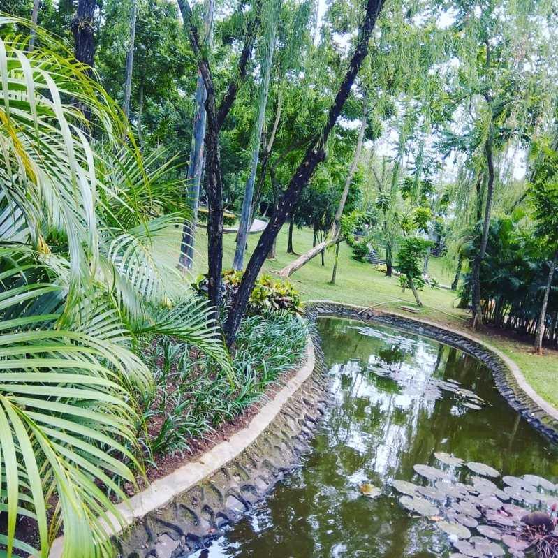 taman spathodea atau taman sepatudea